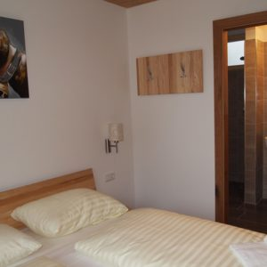 Oostenrijk -Neukirchen am Grossvenediger- appartement Top nr. 11
